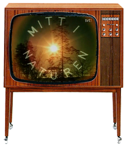 TV-mitt_i_naturen.png